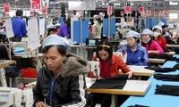 การเสวนาเกี่ยวกับกระบวนการเจรจาข้อตกลงการค้าเสรีระหว่างเวียดนามกับอียู หรือ EVFTA