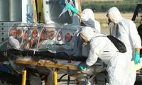 จี20 ให้คำมั่นที่จะต่อต้านการแพร่ระบาดของเชื้อไวรัสอีโบลา