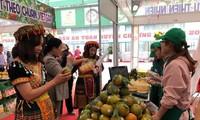 สัปดาห์ส้มหวานและผลิตภัณฑ์ OCOP จังหวัดห่ายางในกรุงฮานอย