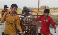 เวียดนามกำลังใช้ประโยชน์จากข้อตกลง EVFTA