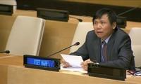 เวียดนามเป็นประธานการประชุมคณะกรรมการของคณะมนตรีความมั่นคงแห่งสหประชาชาติเกี่ยวกับปัญหาซูดานใต้