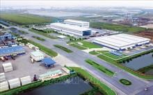 Thương mại Việt - Bỉ gia tăng, mang lại nhiều cơ hội cho các nhà đầu tư