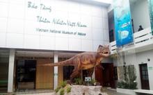 เที่ยวพิพิธภัณฑ์ค้นคว้าธรรมชาติเวียดนาม