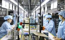 Quang Ninh mantiene estable la producción industrial en el contexto del covid-19