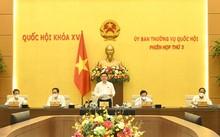 Clôture de la troisième session du comité permanent de l'Assemblée nationale