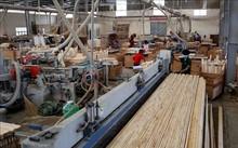 Quy định Hệ thống bảo đảm gỗ hợp pháp Việt Nam