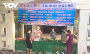 Dong Thap province finds outlets for local farm produce