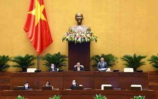 Vietnam fortalece la protección de la propiedad intelectual