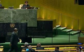 Albania, Brasil, Gabón, Ghana y Emiratos Árabes Unidos elegidos para el Consejo de Seguridad