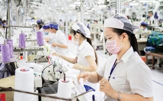 越南对CPTPP成员国的出口总额超过250亿美元