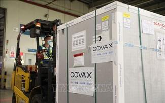Près de 1,7 million de doses de vaccin anti-COVID-19 de COVAX arrivées au Vietnam