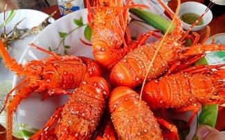 빈바섬에 랍스터로 매력적인 요리
