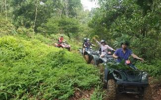 乘坐地形车探索同模森林