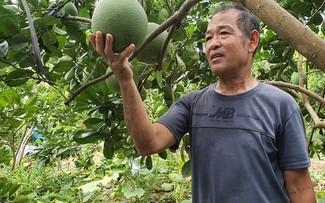 帮助居民从事农业生产的模范伤残军人阮光全