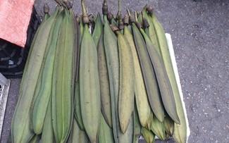 「ヌクナク」の木の実から作るタイ族の料理
