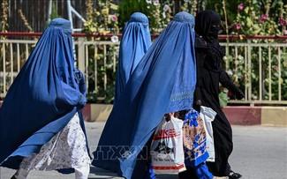 Afghanistan: Les talibans réinstaurent une Constitution datant de 1964