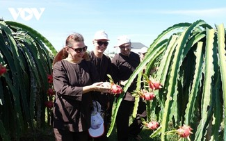 Binh Thuan unlocks agricultural tourism potential