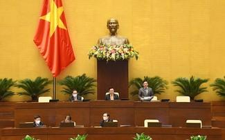 La loi sur la propriété intellectuelle en débat à l'Assemblée nationale