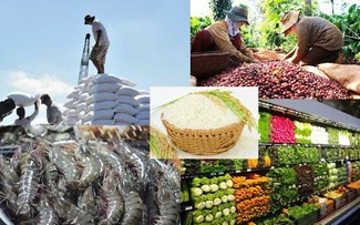 Thủ tướng Chính phủ chỉ đạo thúc đẩy sản xuất, lưu thông, XK nông sản