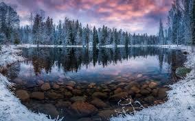 Finnish culture explored through sauna, Karelian pie, and more...