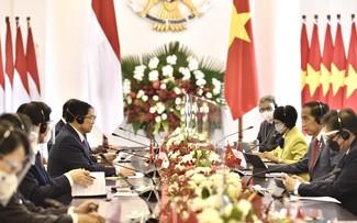 Премьер-министр Фам Минь Тинь провел встречу с президентом Индонезии Джоко Видодо