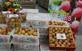 Huy động kiều bào quảng bá, tiêu thụ hàng hóa Việt Nam ở nước ngoài