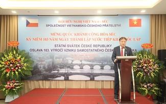 Thúc đẩy các hoạt động ngoại giao nhân dân Việt Nam - Cộng hòa Czech