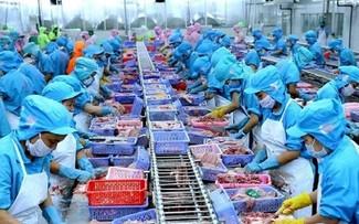 Объём экспорта рыбной продукции составил почти 2,4 миллиарда долларов