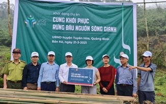 Quang Binh province restores upstream forest of Gianh river