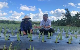 Ba Ria Vung Tau will die Ziele zur Modernisierung der ländlichen Gebiete