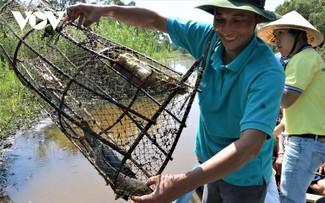 Nông dân Cà Mau làm du lịch sinh thái