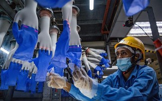 ASEAN+3 kỳ vọng kinh tế phục hồi nhanh nhờ vaccine ngừa COVID-19