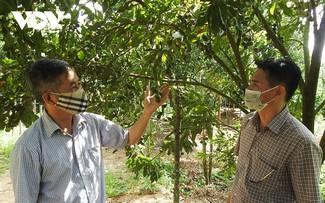Hợp tác xã ở Kon Tum: đoàn kết và sáng tạo để vượt qua khó khăn do dịch Covid-19