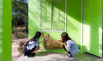 La aldea con pintura mural de Tam Thanh-otro destino atractivo de Quang Nam