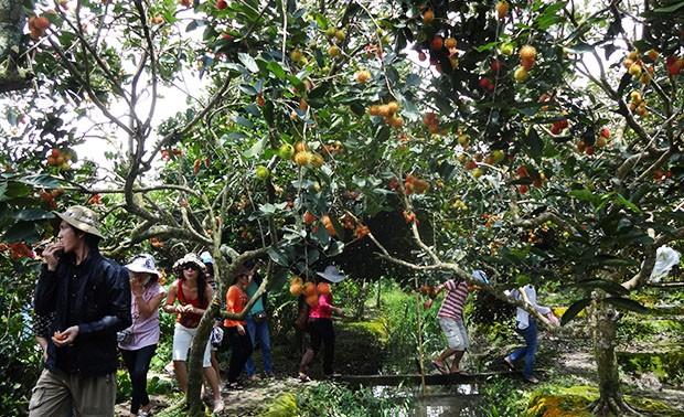 Provinsi Ba-Ria Vung Tau Mengembangkan Potensi Ekowisata