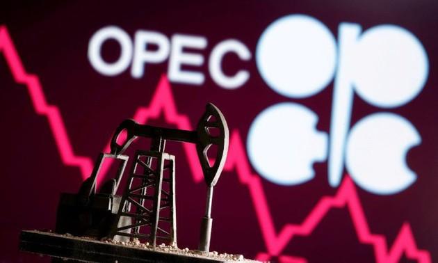 AS Desak OPEC+ agar Tingkatkan Hasil Produksi Minyak untuk Bantu Pemulihan Ekonomi