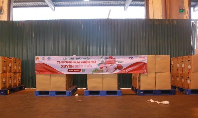 E-commerce Lintas Batas – Peluang bagi Hasil Pertanian Vietnam Masuk ke Uni Eropa