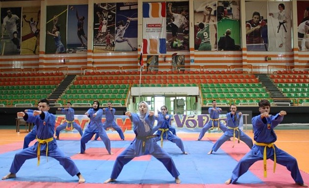 Celebran Festival Internacional del arte marcial vietnamita en Egipto
