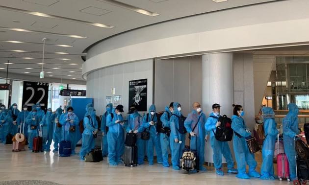 Repatrian a más vietnamitas desde Japón y África