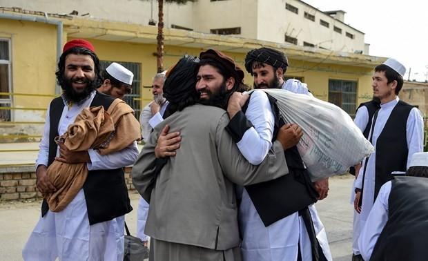 Vietnam respalda el proceso de paz integral en Afganistán