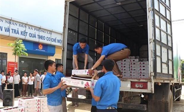 Vietnam exportará primer lote de frutas a la UE bajo normas del EVFTA
