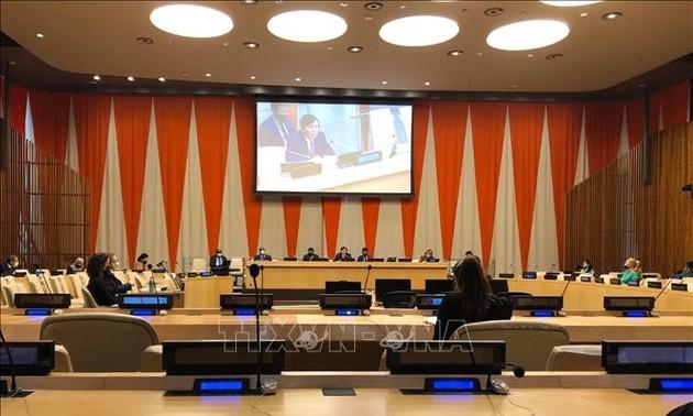 Expertos internacionales aprecian el papel activo de Vietnam en el Consejo de Seguridad de la ONU