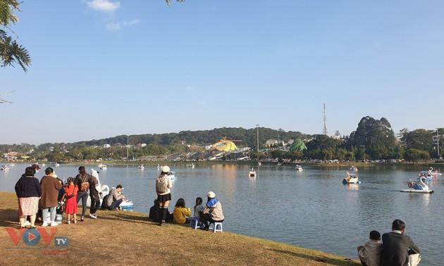 大叻市吸引大量游客前来春游