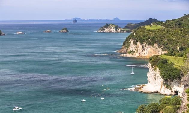 Nouvelle-Zélande : Alerte au tsunami dans tout le Pacifique après un séisme au large des îles Kermadec