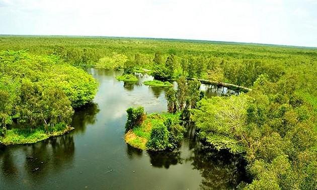 Journée internationale de l'environnement: Le Vietnam entre dans la décennie de restauration des écosystèmes