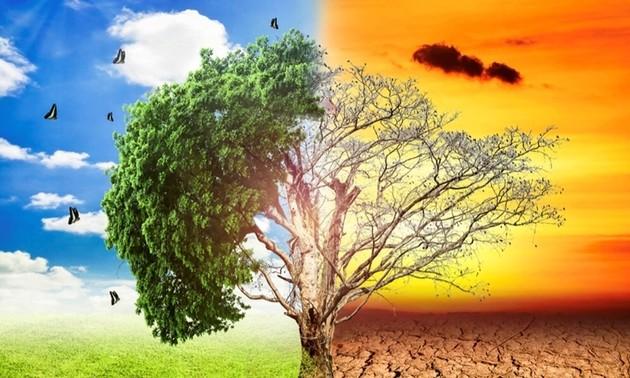 Un site web sur le changement climatique exclusivement destiné aux jeunes Vietnamiens