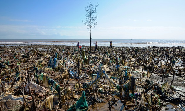 Photo exhibition 'Save our seas': Only action brings changes!