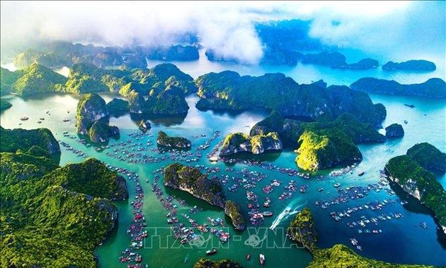 Ha Long Bay-Cat Ba Archipelago to seek world heritage recognition