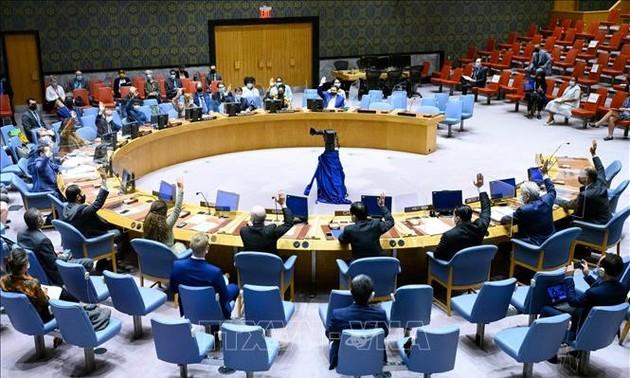 Vietnam ruft zur Lösung der Konflikte in Somalia auf