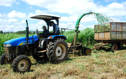Hợp tác song phương Việt Nam- Nhật Bản trong lĩnh vực nông nghiệp